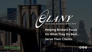 ELANY Ad Banner